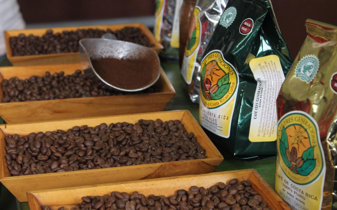 Plantation de café Doka