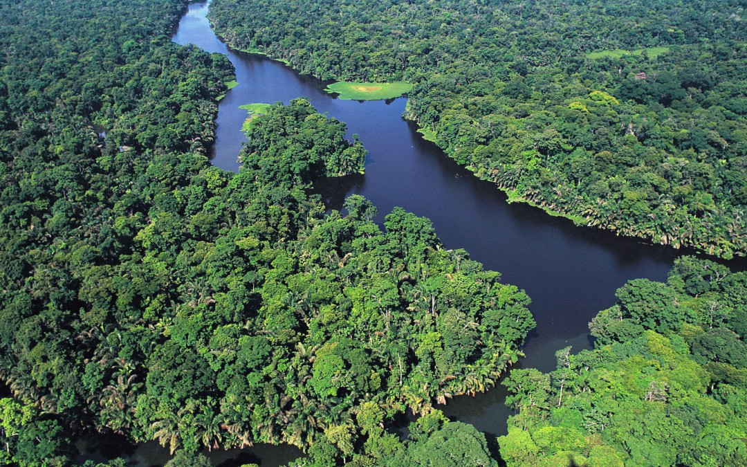 Parc National Tortuguero